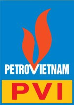 Ra mắt website PVI Holdings mới